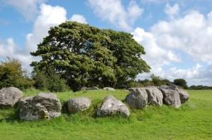 Baum und Steinkreis in Irland